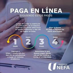 Pago en línea